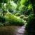 62-praha_troja_botanicka_zahrada_japonska_zahrada
