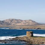 36-torre_della_pelosa__isola_piana__asinara_da_capo_falcone-wikipedia-autore-enrico-sirola